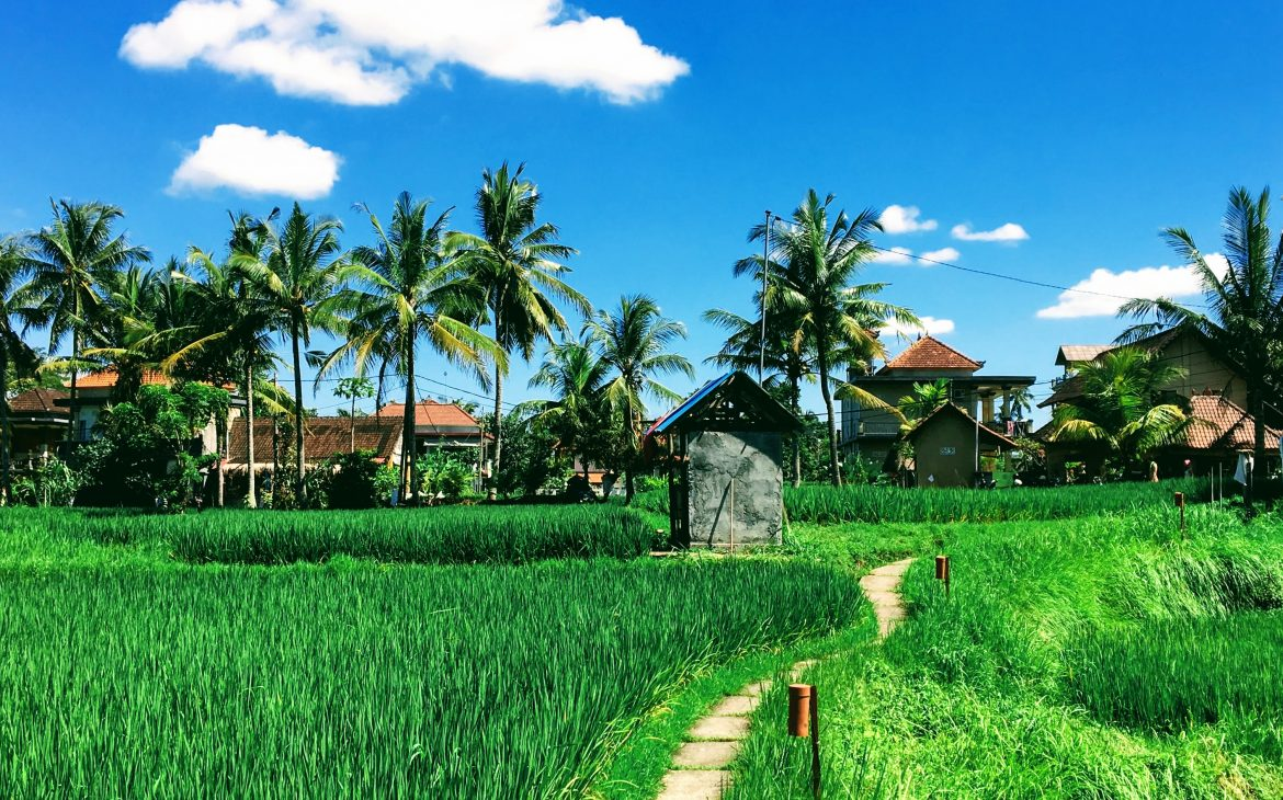 How to earn passive income as a digital nomad while traveling the world